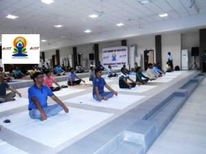 International Yoga Day organized by LNCT