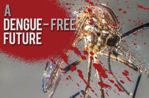 excel Dengue-fever-prevention_Asia-Life-Magazine-780x516