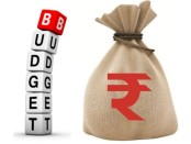 Jagmohan Garg, Jagmohan Garg Delhi, Jagmohan Garg News, Jagmohan Garg Dmall, Union Budget