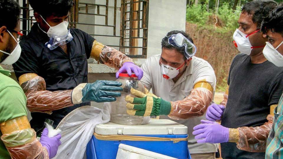 nipah virus outbreak