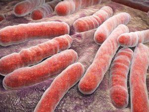 Disease tolerance in treating Tuberculosis
