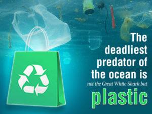 Zedpack is beating adversities caused by plastic bags