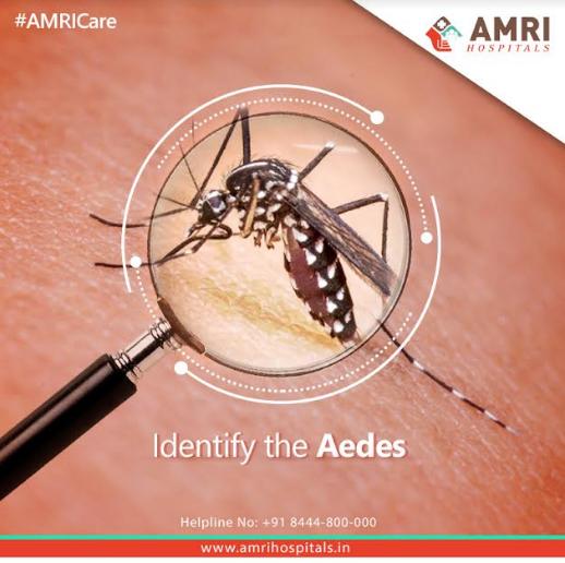 AMRI Against Dengue